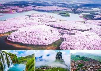 ทัวร์กุ้ยโจว ซากุระหมื่นไร่ น้ำตกหวงกัวซู่ ภูเขาฟานจิ้งซาน หมู่บ้านเผ่าแม้วใหญ่ที่สุดในโลก
