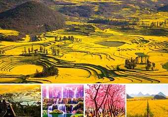 Blossom season @Yunnan ทัวร์หยวนหยาง โหลวผิง เจี้ยนสุ่ย ดอกซากุระ