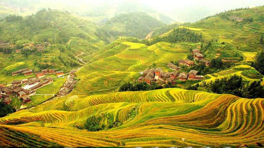 นาขั้นบันไดหลงเซิ่น Longsheng or Longji Rice Terrace