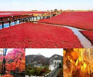 ทัวร์สีสันอารยธรรมเมืองชายแดน ตานตง เปิ่นซี ผานจิ้น เสิ่นหยาง หญ้าแดง :ทัวร์จีนแนะนำ